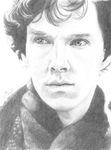 Sherlock by Annocent