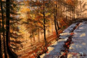 Autumn and Snow by turkill