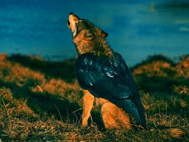 Winged Howling Wolf by Maszeattack