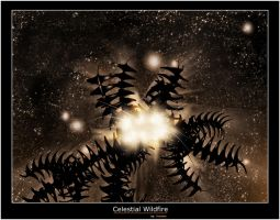 Celestial Wildfire by Overtone