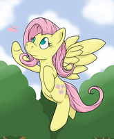 Flutter by thepiplup