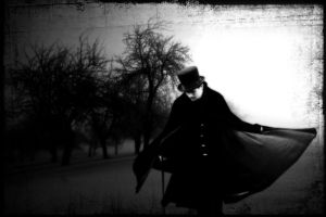 Victorian Winter by satyr