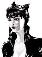 Anne Hathaway as Catwoman by Tapaidh