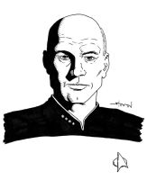 Jean-Luc Picard by StevenWilcox