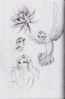 more sketches :3 by MoonLightRose17