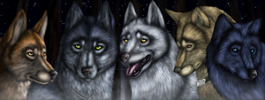 wolf's rain bookmark for sale by BlackLightning95