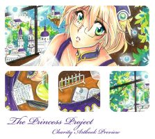 Princess Project Preview by Mireielle