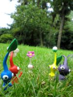 Pikmin - Our next Destination by ClayPita