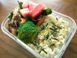 grilled chicken bento by blackfacet