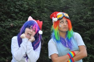 MLP - Twilight Sparkle and Rainbow Dash by Spinelie