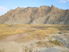 109 by featherstockimages