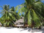 french polynesian islands h18 by frenchcuisine