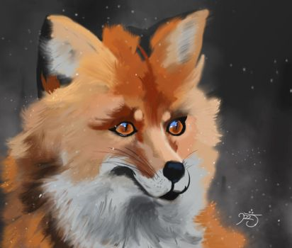 Winter Fox by MizuxAme