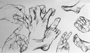 Hands and feet study by GosterMonster