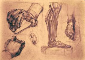 leg and hand study by Aprilyus