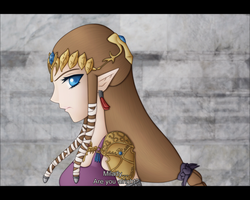 Twilight Princess Anime Screen by Lady-Zelda-of-Hyrule