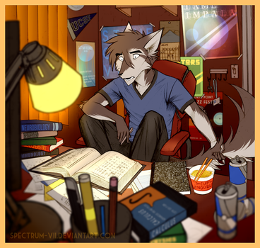 The College Experience by Spectrum-VII