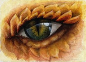 Dragon eye by shezarine