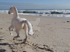 In Our Self We Find The Sea by Breyer101