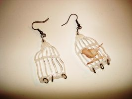 Bird Cage Earrings I by smallrinilady