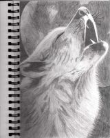 Howling Wolf Drawing by JanineArtWoohoo