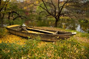 boat in the leaves by avarenity