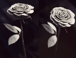 Toilet Roll Roses 2013 by deepset