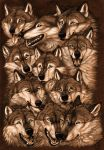 Muzzles by Anisis