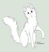 Free Curious Cat Lineart by silverXdragon-CotC
