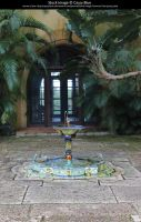 Bok Tower Gardens Stock 10 by Cassy-Blue