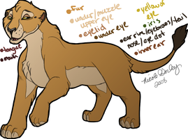 Unnamed Lioness by KoiFishSushi
