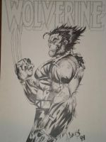 Huge Wolverine 99 by LucasAckerman