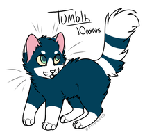 tUMBLR CATSSCsX by Collieh