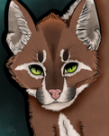 Kakii the Caracal by Draglycal