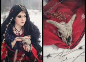 Winter enchantress by mysteria-violent