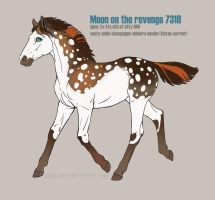 Nordanner Foal Moon on the revenge 7310 by Moon-illusion
