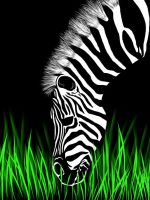 Zebra head by Theamat
