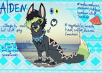 Aiden ref by catmele0n