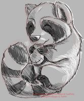 Daily Drawing Day 144 Raccoon by MidnightHuntingWolf