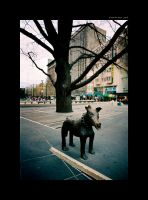 not boar, not dog by nains