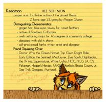 Kesomon was here - 2011 DA ID by Kesomon