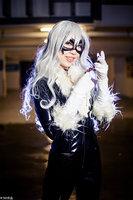 Black Cat : Precious by mikuen-drops