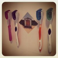 ~Toothbrush Family~ by Belynx16