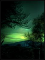 green light _ by NervousTears