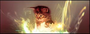 Kitty Spring by Inqubus-verseum