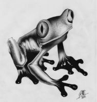 Frogster by rininci