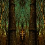 the Forrest dilema by darkhourimaging