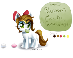 Filly Blossom reference and Bio by Incinerater