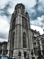 Bristol City Museum by TheWinterStorm