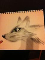 oil pastel practice 1 by seshirawolf